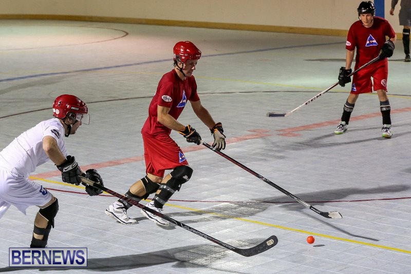 Colorado-Rockies-vs-Toronto-Arenas-Bermuda-Ball-Hockey-January-21-2015-80