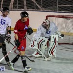 Colorado Rockies vs Toronto Arenas Bermuda Ball Hockey, January 21 2015-81