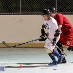 Colorado Rockies vs Toronto Arenas Bermuda Ball Hockey, January 21 2015-82