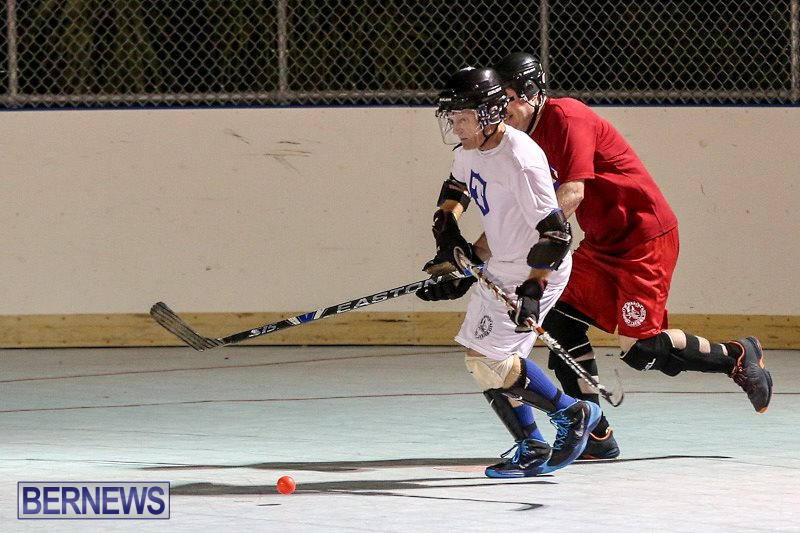 Colorado-Rockies-vs-Toronto-Arenas-Bermuda-Ball-Hockey-January-21-2015-82