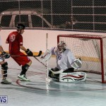 Colorado Rockies vs Toronto Arenas Bermuda Ball Hockey, January 21 2015-84