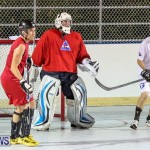 Colorado Rockies vs Toronto Arenas Bermuda Ball Hockey, January 21 2015-86