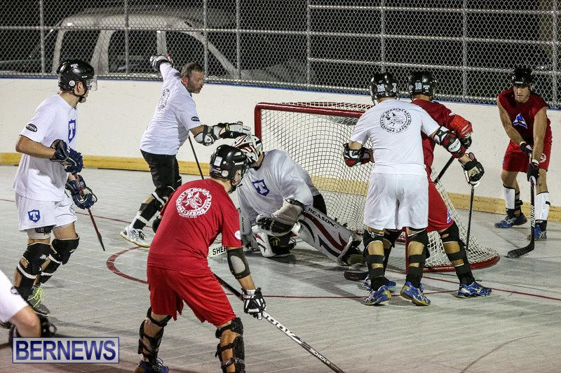 Colorado-Rockies-vs-Toronto-Arenas-Bermuda-Ball-Hockey-January-21-2015-88