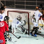 Colorado Rockies vs Toronto Arenas Bermuda Ball Hockey, January 21 2015-89