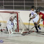 Colorado Rockies vs Toronto Arenas Bermuda Ball Hockey, January 21 2015-9
