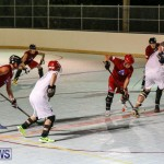 Colorado Rockies vs Toronto Arenas Bermuda Ball Hockey, January 21 2015-90