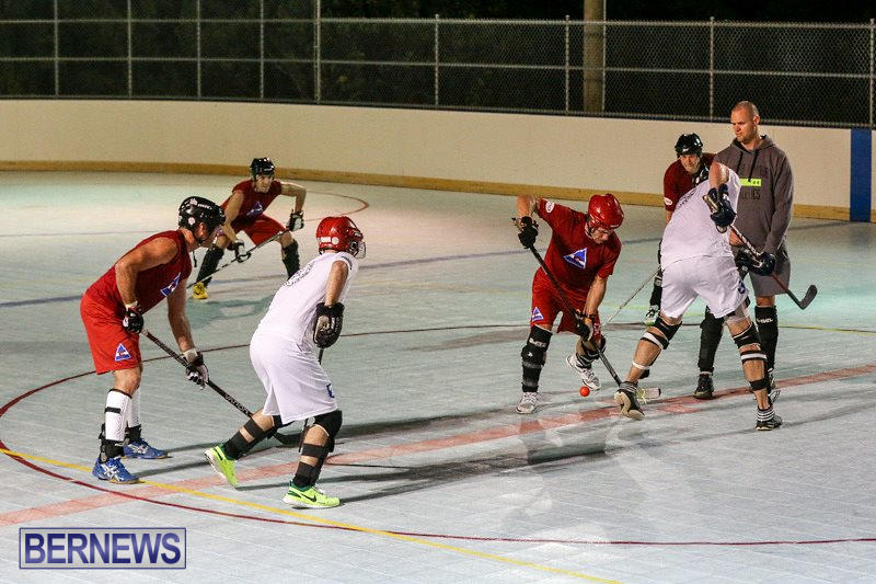 Colorado-Rockies-vs-Toronto-Arenas-Bermuda-Ball-Hockey-January-21-2015-90