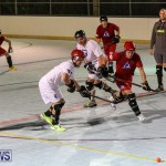 Colorado Rockies vs Toronto Arenas Bermuda Ball Hockey, January 21 2015-91