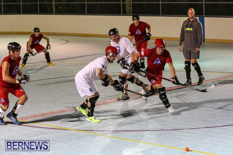 Colorado-Rockies-vs-Toronto-Arenas-Bermuda-Ball-Hockey-January-21-2015-91