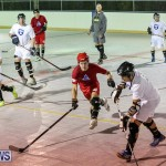 Colorado Rockies vs Toronto Arenas Bermuda Ball Hockey, January 21 2015-92