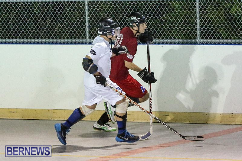 Colorado-Rockies-vs-Toronto-Arenas-Bermuda-Ball-Hockey-January-21-2015-93