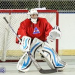 Colorado Rockies vs Toronto Arenas Bermuda Ball Hockey, January 21 2015-94