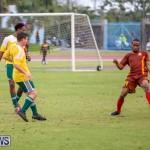 Dandy Town vs Robin Hood Bermuda, January 1 2015-13