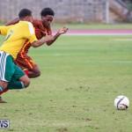 Dandy Town vs Robin Hood Bermuda, January 1 2015-16