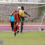 Dandy Town vs Robin Hood Bermuda, January 1 2015-19