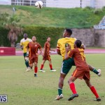 Dandy Town vs Robin Hood Bermuda, January 1 2015-25