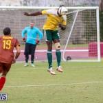 Dandy Town vs Robin Hood Bermuda, January 1 2015-27