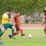 Dandy Town vs Robin Hood Bermuda, January 1 2015-35