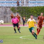 Dandy Town vs Robin Hood Bermuda, January 1 2015-44