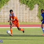 Devonshire Colts vs Young Men Social Club Bermuda, January 1 2015-15