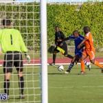 Devonshire Colts vs Young Men Social Club Bermuda, January 1 2015-18