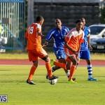 Devonshire Colts vs Young Men Social Club Bermuda, January 1 2015-20