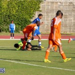 Devonshire Colts vs Young Men Social Club Bermuda, January 1 2015-26