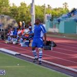 Devonshire Colts vs Young Men Social Club Bermuda, January 1 2015-4