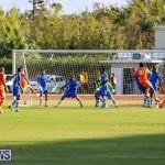 Devonshire Colts vs Young Men Social Club Bermuda, January 1 2015-8