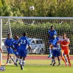 Devonshire Colts vs Young Men Social Club Bermuda, January 1 2015-9