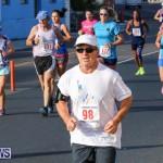 Fairmont to Fairmont Race Race Bermuda, January 11 2015-101