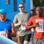 Fairmont to Fairmont Race Race Bermuda, January 11 2015-116