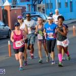 Fairmont to Fairmont Race Race Bermuda, January 11 2015-128
