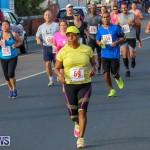 Fairmont to Fairmont Race Race Bermuda, January 11 2015-132