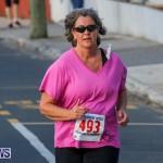 Fairmont to Fairmont Race Race Bermuda, January 11 2015-196