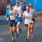 Fairmont to Fairmont Race Race Bermuda, January 11 2015-44