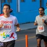 Fairmont to Fairmont Race Race Bermuda, January 11 2015-50