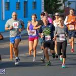 Fairmont to Fairmont Race Race Bermuda, January 11 2015-58