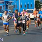 Fairmont to Fairmont Race Race Bermuda, January 11 2015-61