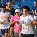 Fairmont to Fairmont Race Race Bermuda, January 11 2015-78
