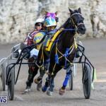 Harness Pony Racing Bermuda, January 1 2015-12