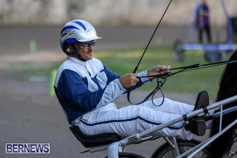Harness-Pony-Racing-Bermuda-January-1-2015-18