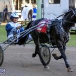 Harness Pony Racing Bermuda, January 1 2015-19