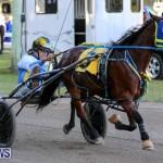 Harness Pony Racing Bermuda, January 1 2015-20