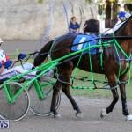 Harness Pony Racing Bermuda, January 1 2015-21