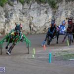 Harness Pony Racing Bermuda, January 1 2015-27