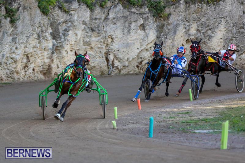 Harness-Pony-Racing-Bermuda-January-1-2015-27