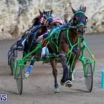 Harness Pony Racing Bermuda, January 1 2015-28