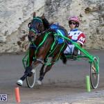Harness Pony Racing Bermuda, January 1 2015-31