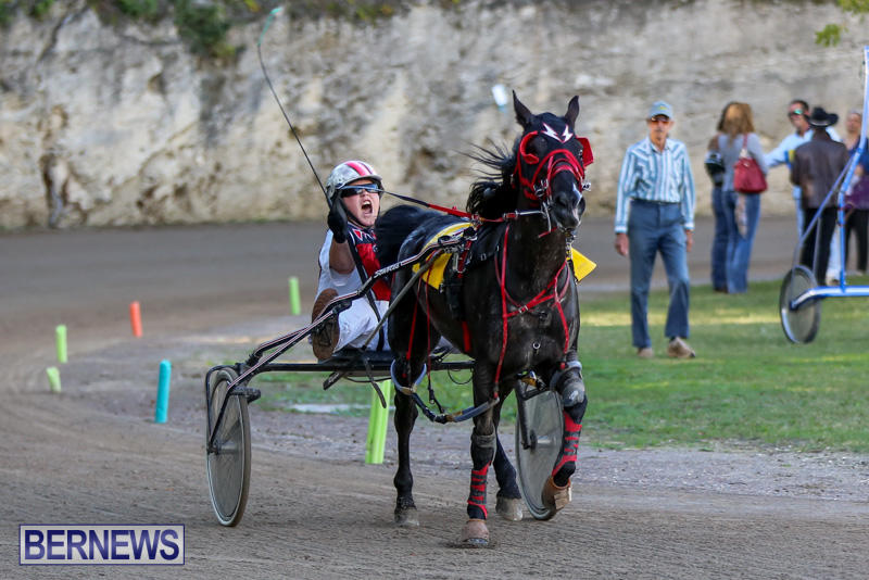 Harness-Pony-Racing-Bermuda-January-1-2015-33